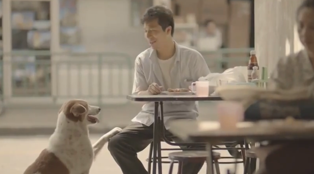 True love Is The Essence Of Kindness. This Heartfelt Video Will Melt Your Heart And Bring Tears.