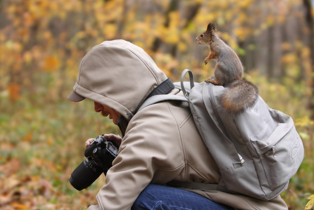 Flawlessly-Timed-Animal-Photos-Perfect-3