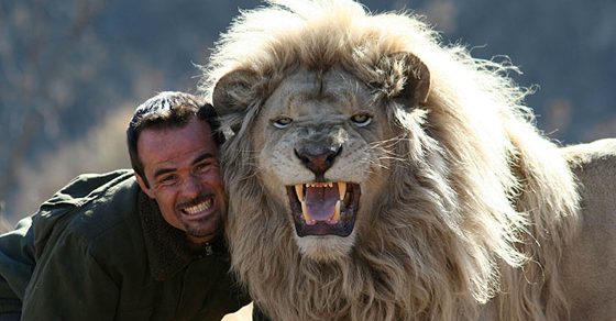 This Man Sleeps And Plays With Lions. I Thought They Would Attack Him, But I Wasn't Expecting This!