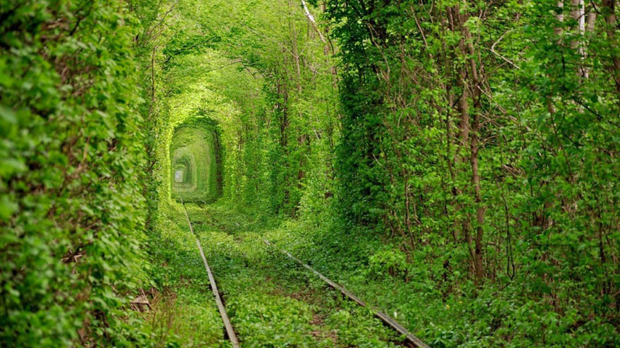 amazing-unseen-tunnels-2