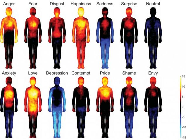 This Incredible Science Experiment Reveals How Emotions Effect Parts Of Our Body. Fascinating…