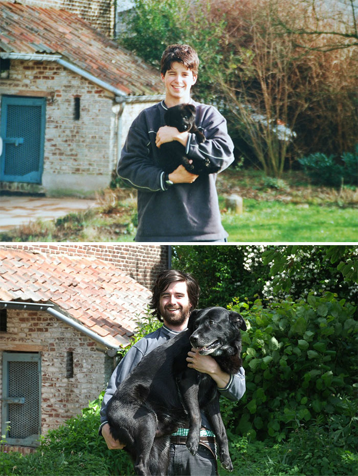 before-and-after-childhood-dog