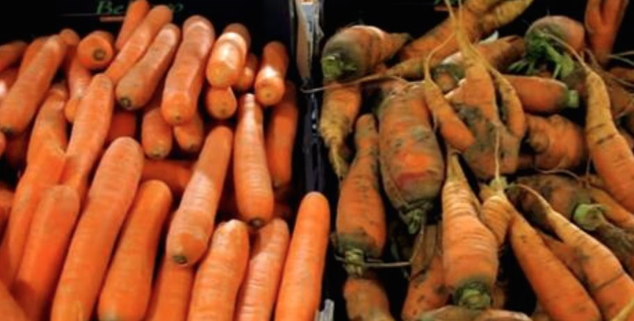 This Supermarket Got People To Buy Their Trash…Watch How They Did It! So Brilliant.