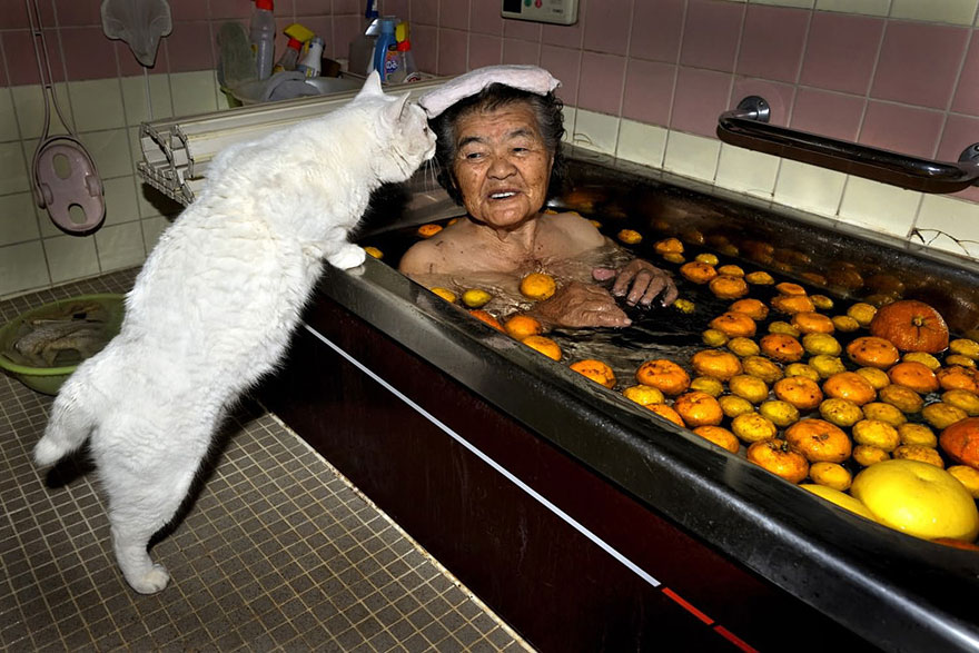 japanese-grandma-and-cat-bath