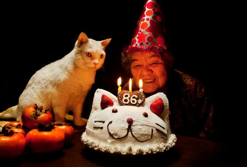 japanese-grandma-and-cat-cake