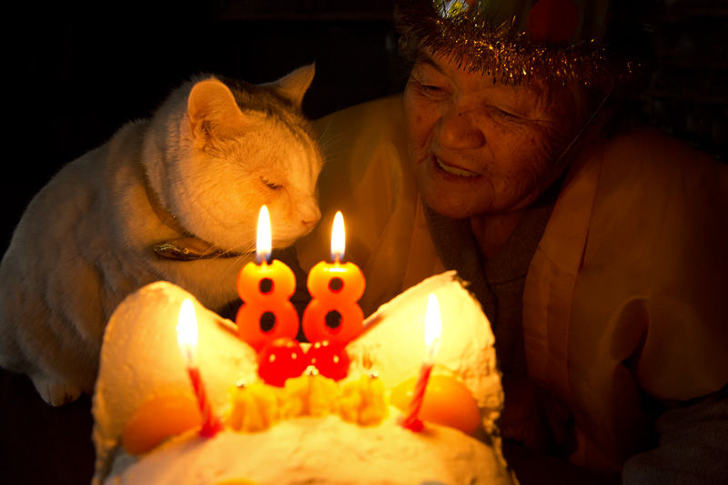 japanese-grandma-and-cat-celebrating-88