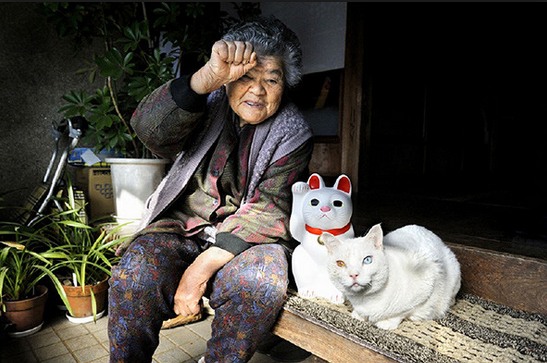 japanese-grandma-and-cat-lucky-cat