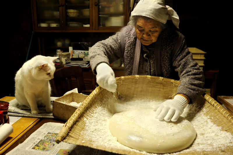 japanese-grandma-and-cat-making-bread