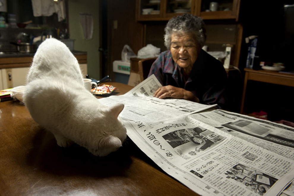 japanese-grandma-and-cat-newspaper2