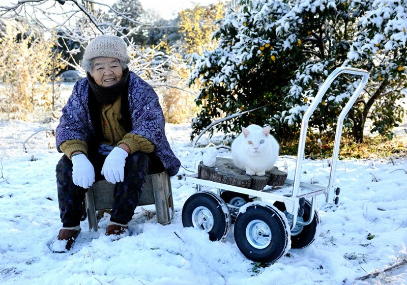 japanese-grandma-and-cat-snow