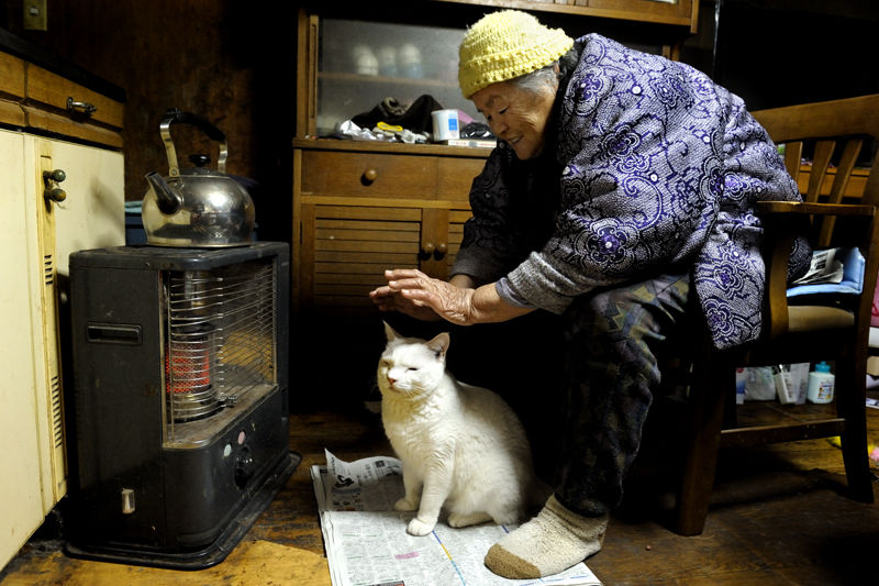 japanese-grandma-and-cat-warming-hands