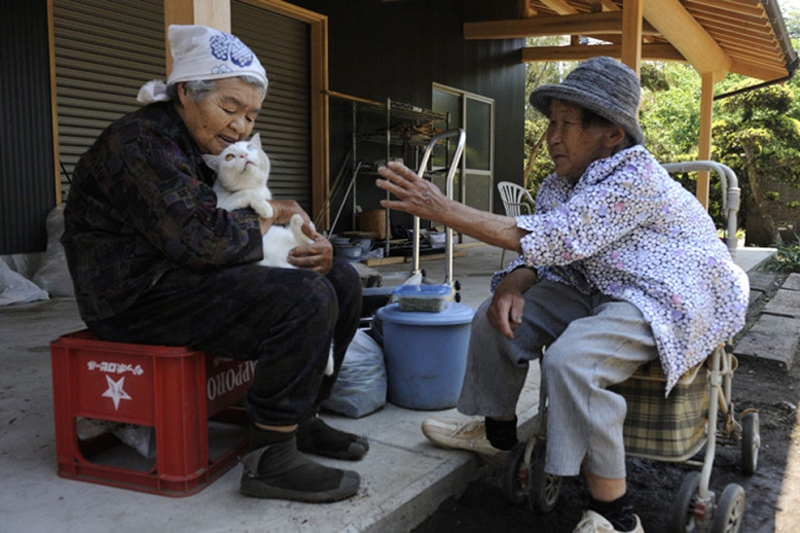 japanese-grandma-and-cat