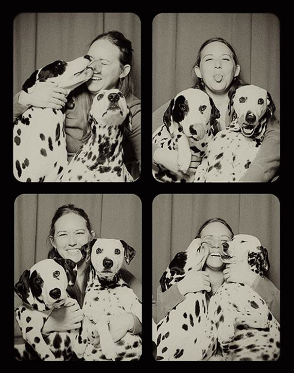 dogs-photo-booth6